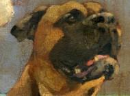 local-dog